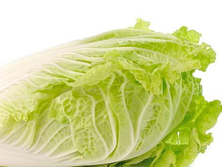 【イベント】冬野菜収穫体験のお知らせ