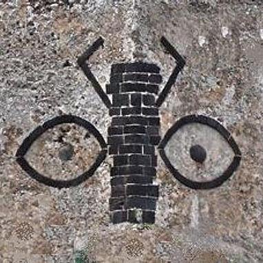 scarabeo nelle mura del castello aragonese