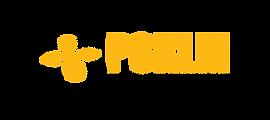Logo-PSKLM.png