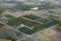 wo_aerial_900px.jpg
