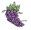 grape-cluster_1.png