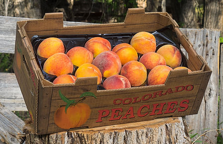 peaches_1.jpg