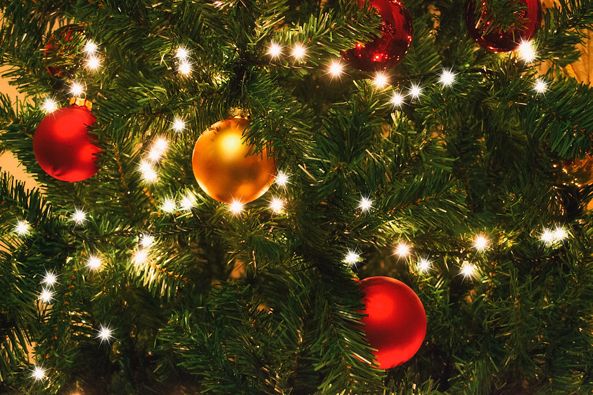 tree-branch-pine-evergreen-holiday-christmas-1417898-pxhere.com.jpg