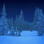 winter-evening-stars_2.jpg