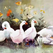 Six Quackers