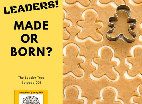 Leaders, Made or Born?
