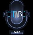 tw3 radio.png