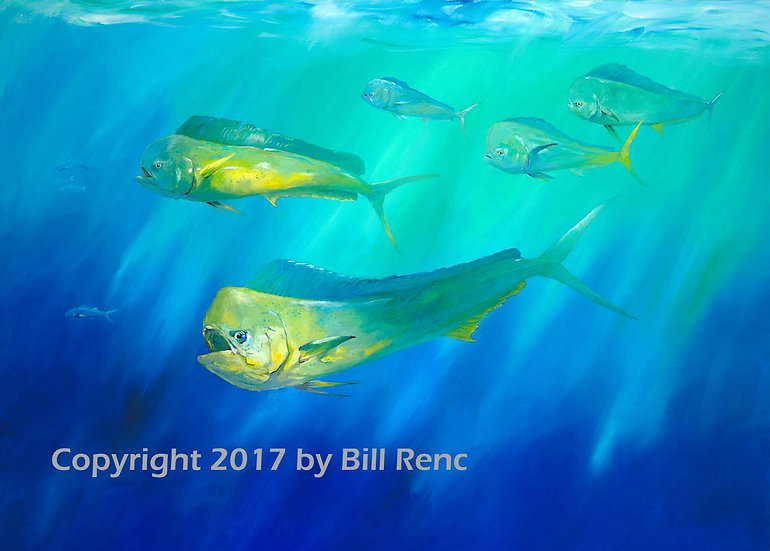 Swimming Free in the Deep Blue Sea