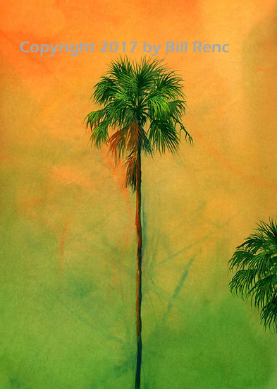 One and a Half Palms