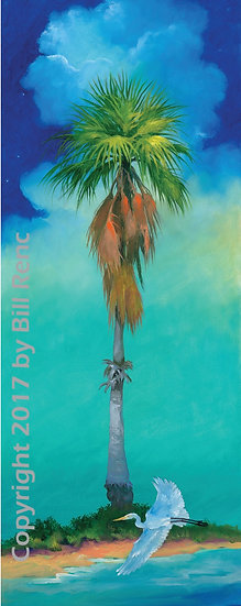 Starlight Palm