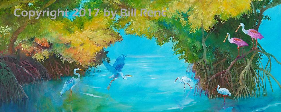 Mangrove Aviary