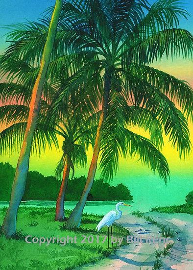 Three Coconut Palms