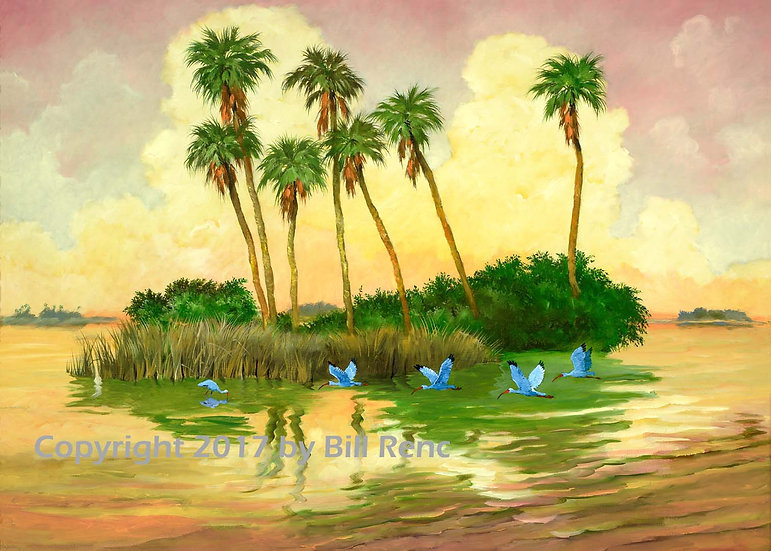 Seven Palms and Five Ibis