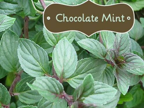 Organic dried chocolate mint leaves add to your mixes