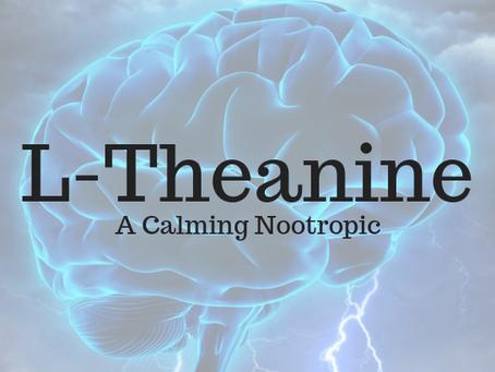 L-Theanine – A Calming Nootropic
