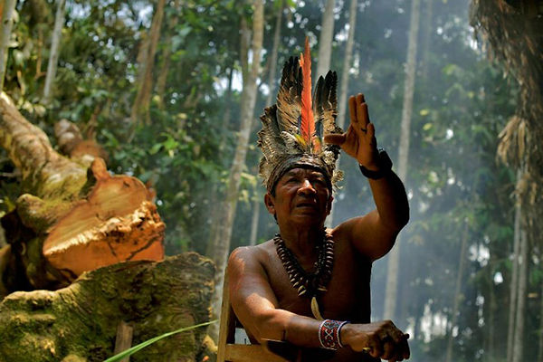 amazon tribes.jpg
