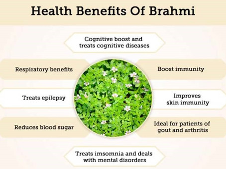 Brahmi Indian Plant for Relaxing Stress memory