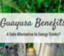 Guayusa_Benefits_600x_edited.png