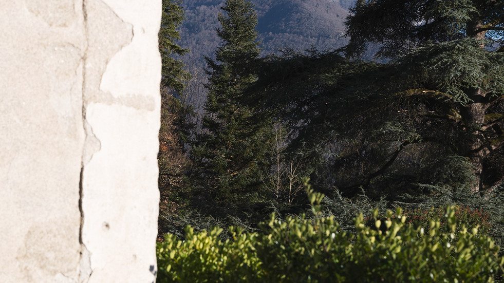 Chateau in the Pyrenean foothills