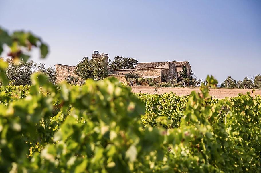 Delightful 17th Century Wine Domaine