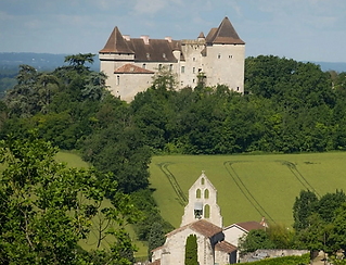 A beautifully renovated medieval chateau with swimming pool and chapel. Accommodate 28 people and cater for 300 guests
