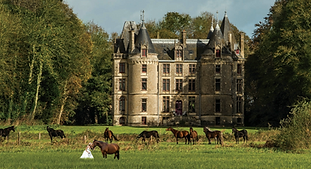 Lovely chateau wedding venue located in the stunning setting of a natural regional park with its own chapel. Sleeps up to 37, caters for 30 to 300