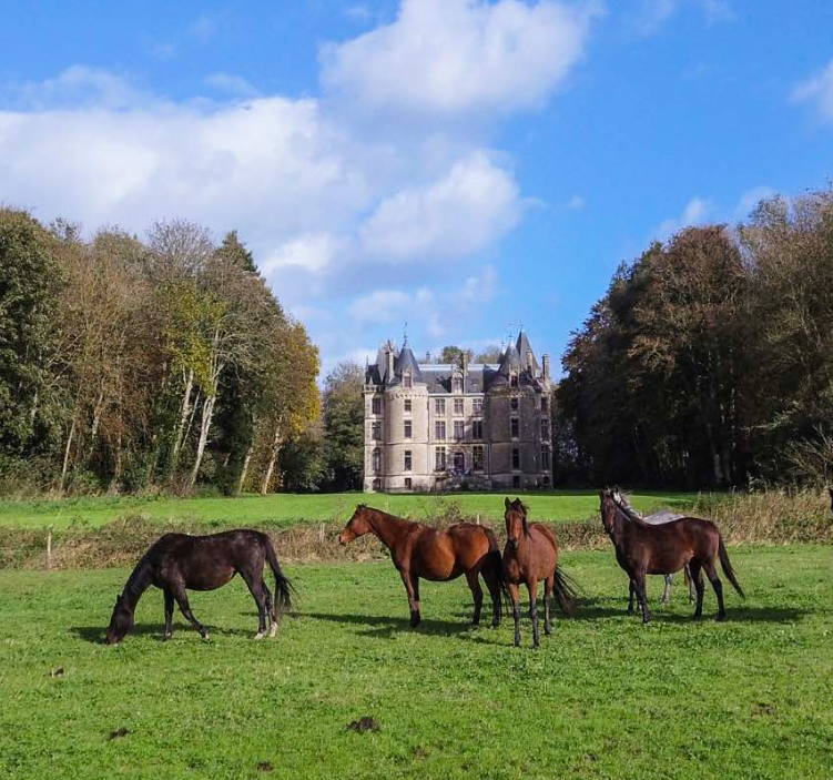 Fairytale Chateau in Normandy