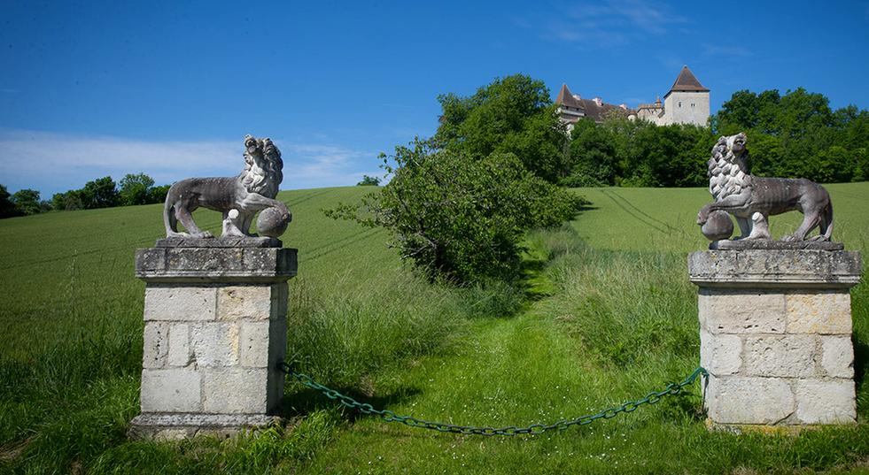 11th Century Chateau
