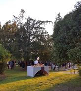 Vineyard Estate near Bordeaux
