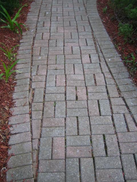 Paver Walkway - Before