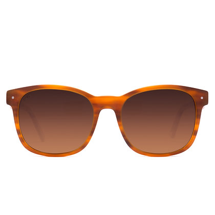 Scout Eco Rootbeer Brown Sunglasses
