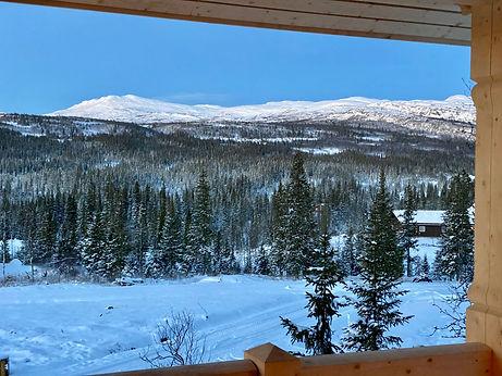 utsikt fra veranda.jpg