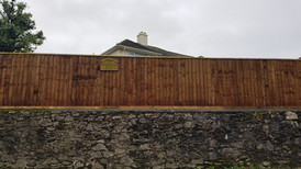 Feather edge fencing, erected with concrete posts.