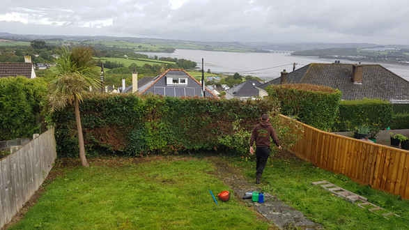 Hedge Maintenance ,Saltash, Cornwall.
