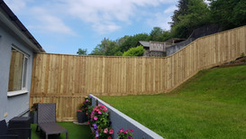 Feather edge fencing. Plymouth