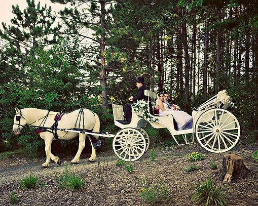 Jennifer and carriage.jpg
