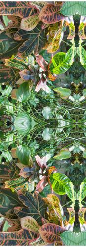 Jungle serie II24..jpg