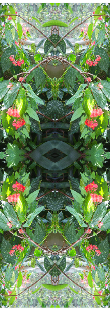 Jungle serie II25..jpg