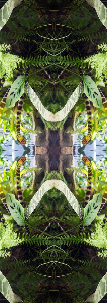 Jungle serie II38..jpg