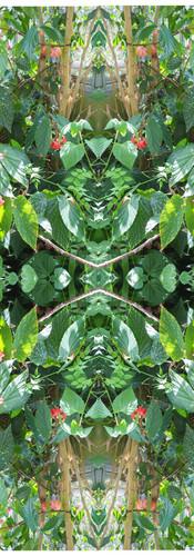 Jungle serie II26..jpg