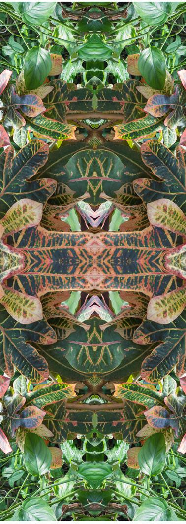 Jungle serie II23..jpg