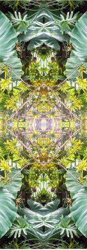 Jungle serie II36..jpg