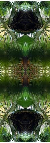 Jungle serie II41..jpg