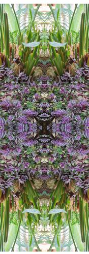 Jungle serie II27..jpg