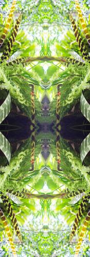 Jungle serie II39..jpg