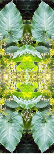 Jungle serie II35..jpg