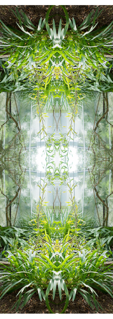 Jungle serie II18..jpg