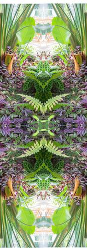 Jungle serie II28..jpg
