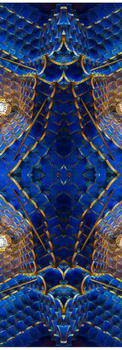 Gaudi 1st Casa Quadri15..jpg