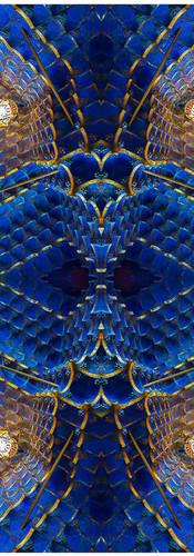 Gaudi 1st Casa Quadri14..jpg